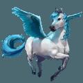 caballo falabella klein