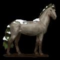 caballo de las estaciones invierno