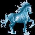 caballo de agua océano