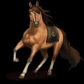 caballo especial tormenta