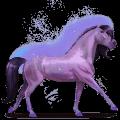 caballo del arco iris brave purple
