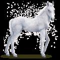 caballo de agua copo de nieve
