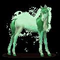 caballo del arco iris forest green